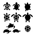 set turtle and tortoise silhouette vector image vector image