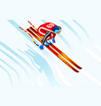 skier jump 3d vector image vector image