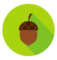 acorn circle icon vector image