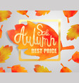 calligraphy poster for autumn sale vector image