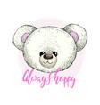 head white plush teddy bear image vector image vector image