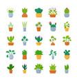 houseplants flat icon set vector image vector image