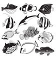 Marine Fish Collection vector image vector image