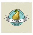 pear vintage hand drawn fresh fruits background vector image vector image