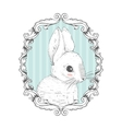 Rabbit in the frame Hand drawing vector image