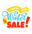 winter sale card vector image