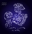 Zodiac sign of aquarius made of stars vector image