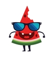 Cute watermelon character design Cartoon vector image