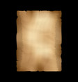 ancient parchment old papyrus craft paper vector image