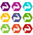 biceps icon set color hexahedron vector image vector image