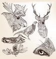 collection hand drawn animals for design vector image vector image