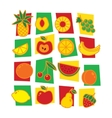 Fruits icons isolated on white background vector image