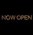 golden glitter isolated standard font word open vector image vector image