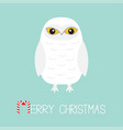 merry christmas candy cane text white snowy owl vector image