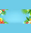 tropical leaves and tropical flowers with blue vector image