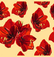 tropical red lily flowers vintage yellow vector image vector image