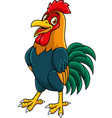 cartoon rooster posing vector image vector image