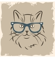 cat in glasses vector image vector image