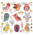 cute woodland owls funny characters vector image