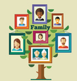 Family tree relationships and traditions vector image vector image