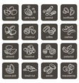 nuts icons set vector image
