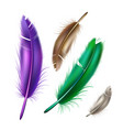 realistic peacock peafowl color feather set vector image vector image