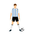 argentina football jersey national team world cup vector image