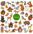 cartoon wild animal characters big set vector image