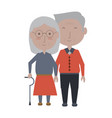 eldery couple icon vector image