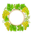 grapes branches frame on white background vector image vector image