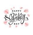 happy valentines day card with rose pink petal vector image