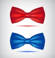 set of realistic blue and red bow ties vector image