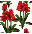 tropical red lily flowers with leaves vector image vector image