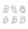 variety cute owl set vector image vector image