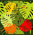 tile tropical pattern with exotic leaves vector image