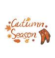 autumn season inscription socks and leaves vector image