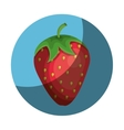 fresh fruit farm product vector image vector image