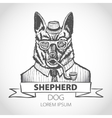 German dog Shepherd hipster smokes a pipe in a vector image vector image