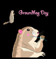 graphics card for groundhog day vector image