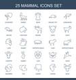 mammal icons vector image vector image