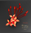 tropical red ixora flowers on black background vector image