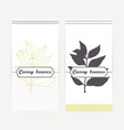 curry leaves in outline and silhouette style vector image vector image