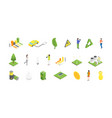 ecology concept 3d isometric view vector image