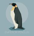 flat emperor penguin vector image
