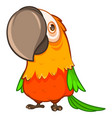 funny fat orange parrot with a large beak vector image vector image