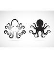 Image an octopus