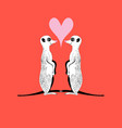meerkats in love vector image