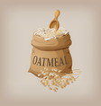 oatmeal flakes in the bag vector image vector image