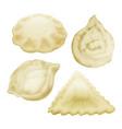 realistic 3d dumplings set vector image vector image