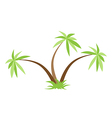 Three palm trees isolated vector image